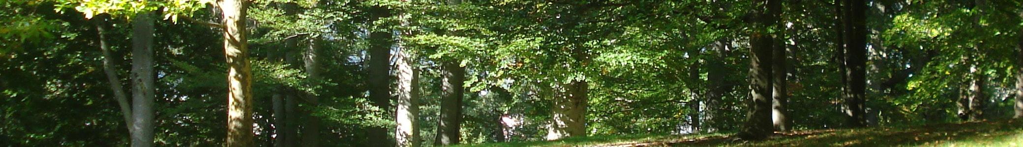 Verein für Gartenbau und Landespflege Straubing e.V.